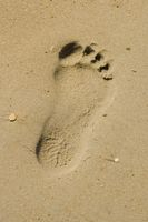 marcher et courir pieds nus
